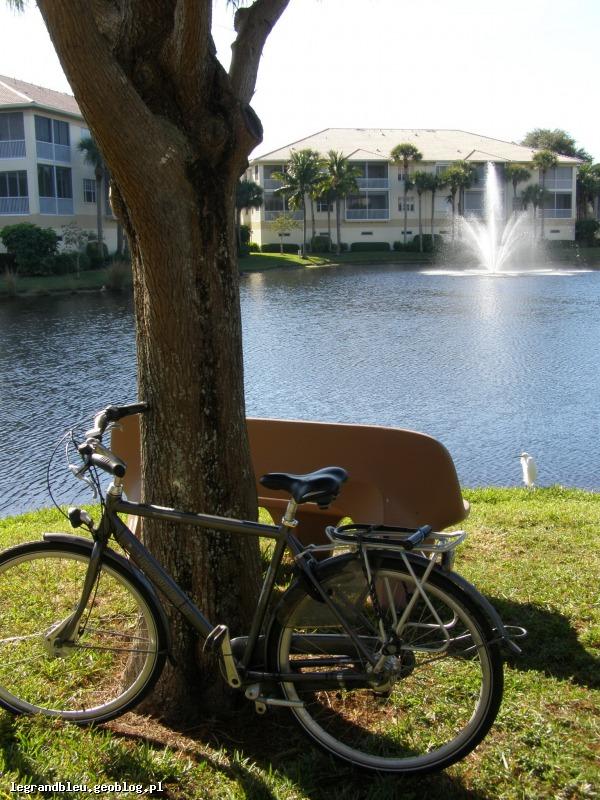 rower Floryda