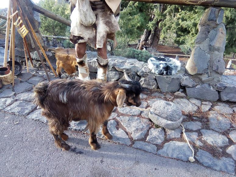 Park Narodowy El Teide